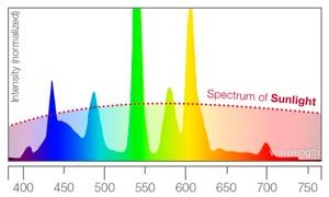 Spektrum for lysrør